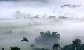 30.7.2020: Kuba – Pinar del Río